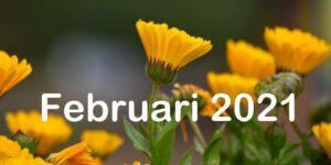 Nieuwsbrief BvS februari 2021
